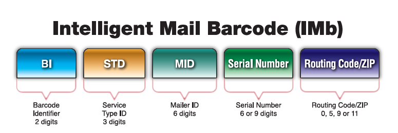 The parts on an IMb: Barecode Identifier 2 digits, service type ID 3 digits, mailer ID 6 digits, serial number 6 or 9 digits, routing code/ZIP 0, 5, 9, or 11 digits