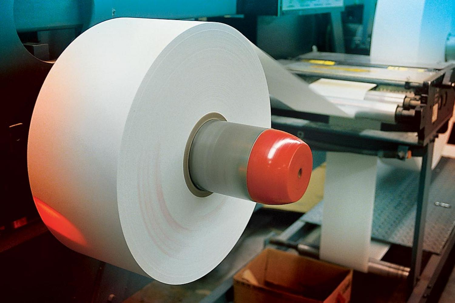 Large roll of eco-friendly paper